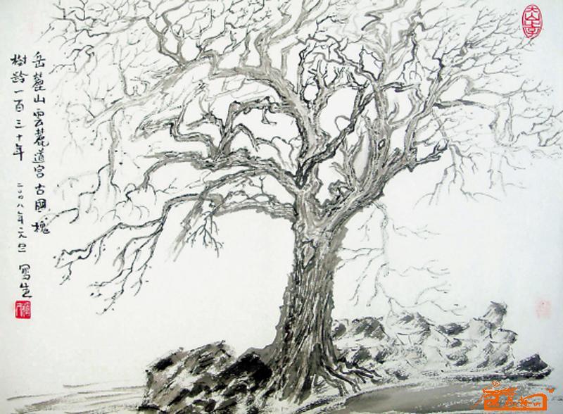 国画名家 贺辉才 - 云麓道宫的古槐树