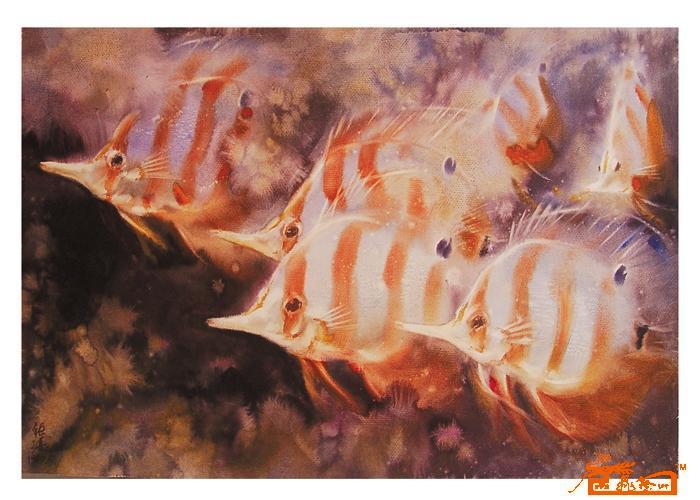 胡钜湛-水彩(鱼)28-淘宝-名人字画-中国书画交易中心