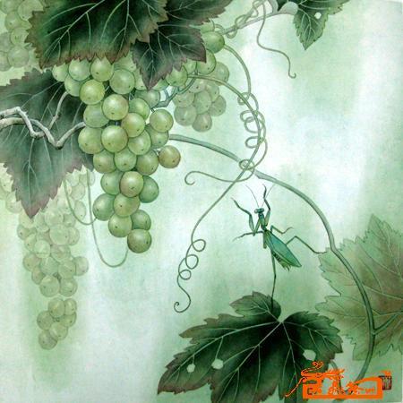 在线国画葡萄画法步骤