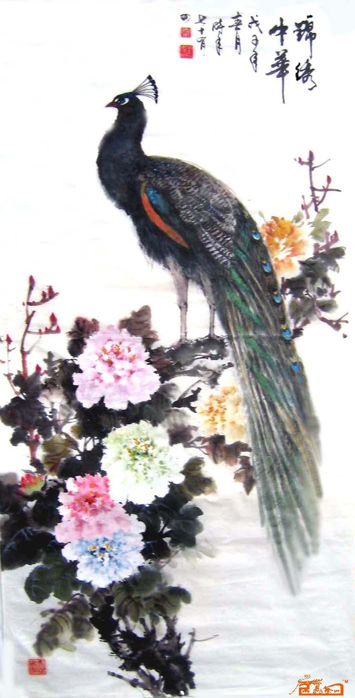 素描动物孔雀图片