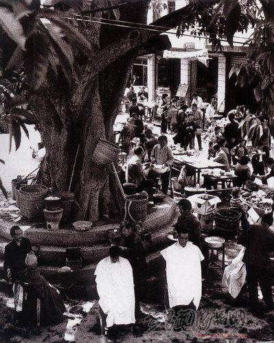 名家 杨麾 书法 - 场头大榕树下是理发匠汇聚的好地方